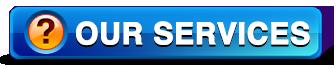Storage Development Partners Services